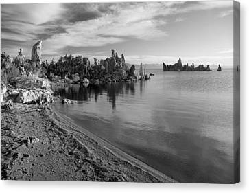 Canvas Print featuring the photograph Mono Towers by Jim Snyder