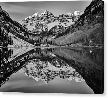 Monochrome Maroon Canvas Print by Darren  White