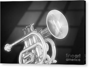 Monotone Trumpet Canvas Print by M K  Miller