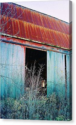 Canvas Print featuring the photograph Monroe Co. Michigan Barn by Daniel Thompson