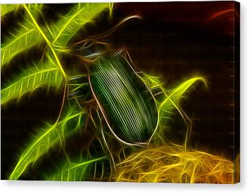 Monster Carabid Beetle Canvas Print