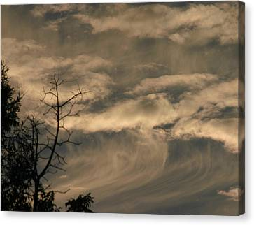 Canvas Print featuring the photograph Monster Wave by Marie Neder