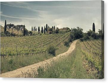 Montalcino - Tuscany Canvas Print by Joana Kruse