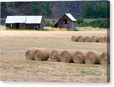 Canvas Print featuring the photograph Montana Bales by Vinnie Oakes