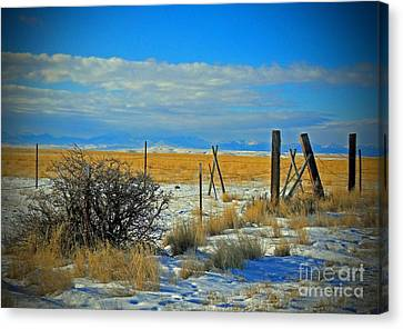Montana Fencerow Canvas Print by Desiree Paquette