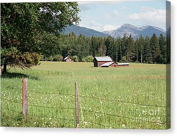 Montana Homestead Canvas Print
