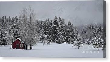 Montana Morning Canvas Print by Diane Bohna