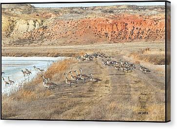 Canvas Print featuring the digital art Montana Spring Thaw by Aliceann Carlton