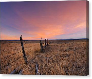 Montana Sunset Canvas Print by Leland D Howard