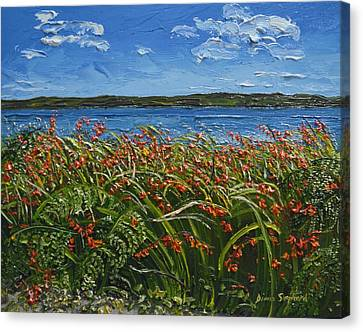 Montbretia Connemara Ireland Canvas Print by Diana Shephard