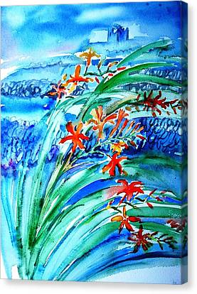 Montbretia On Inisheer  Canvas Print by Trudi Doyle
