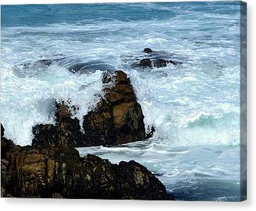 Canvas Print featuring the photograph Monterey-2 by Dean Ferreira