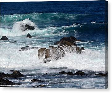 Canvas Print featuring the photograph Monterey-6 by Dean Ferreira