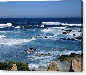 Canvas Print featuring the photograph Monterey-9 by Dean Ferreira