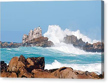 Monterey Bay Waves Canvas Print by Artist and Photographer Laura Wrede