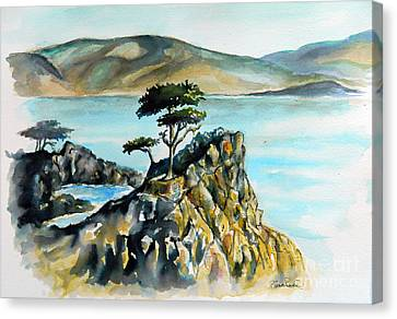 Monterey Pines Canvas Print