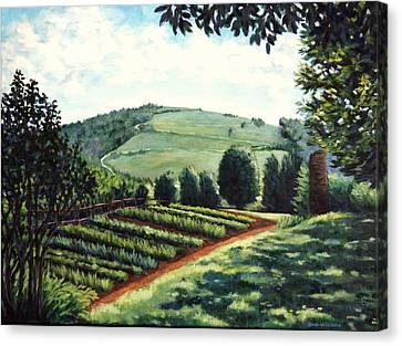 Monticello Vegetable Garden Canvas Print by Penny Birch-Williams