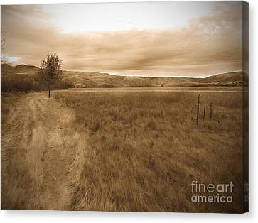 Montour Canvas Print by Kimberly Maiden