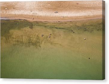 Urban Nature Study Canvas Print - Montrose Beach Dog Park by Adam Romanowicz