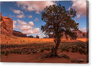 Monument Valley Morning Canvas Print by Tim Bryan