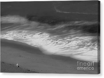Mood Of The Beach Canvas Print