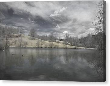Moody Blue Canvas Print by Cindy Rubin