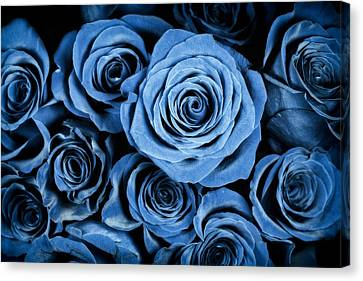 Moody Blue Rose Bouquet Canvas Print