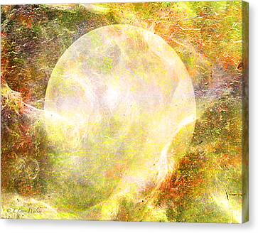 Moon Abstract Canvas Print by J Larry Walker