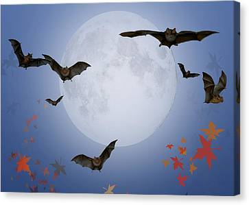 Moon And Bats Canvas Print by Melissa A Benson