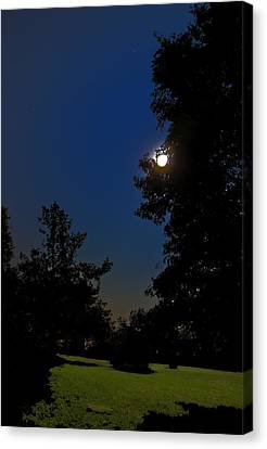Canvas Print featuring the photograph Moon And Pegasus by Greg Reed