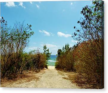 Canvas Print featuring the photograph Moon Bay Walk by Amar Sheow