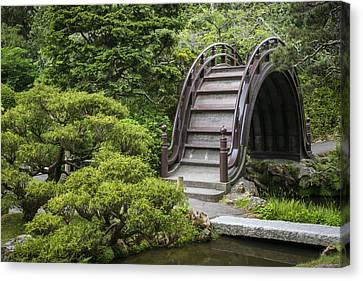 Tea Tree Canvas Print - Moon Bridge - Japanese Tea Garden by Adam Romanowicz