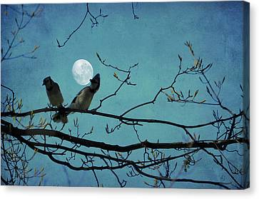 Moon Dance Canvas Print by Emily Stauring
