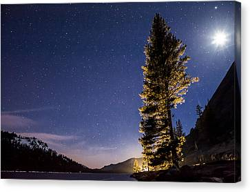 Moon Light Over Tenaya Lake Canvas Print by Cat Connor