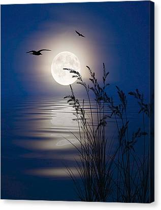 Canvas Print featuring the digital art Moon Light Silhouettes by Nina Bradica