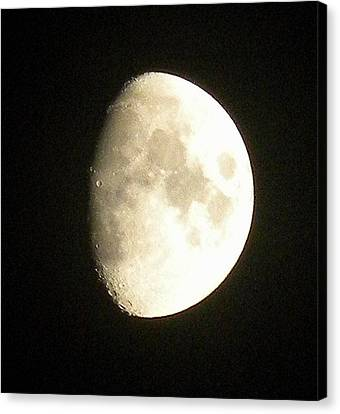 Moon Lit Night Canvas Print