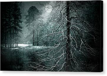Moon Misty Lake  Canvas Print by Dorothy Walker