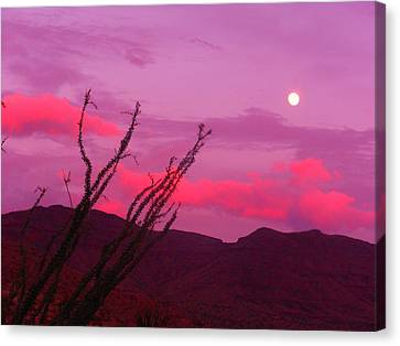 Moon Of The West Canvas Print