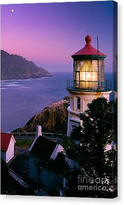 Moon Over Heceta Head Canvas Print by Inge Johnsson