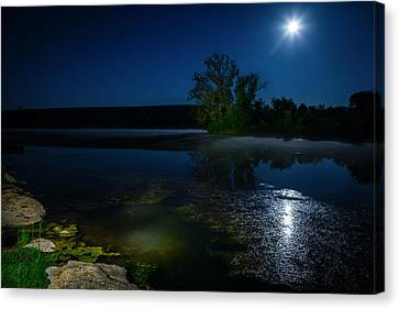 Moon Over Lake Canvas Print by Alexey Stiop