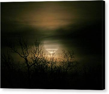 Moon Over Prince George Canvas Print by Karen Harrison