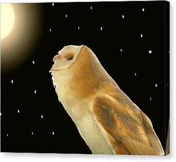 Moon Owl Canvas Print by Peg Urban