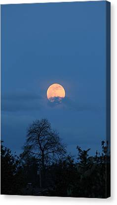 Moon Rising Canvas Print by E Faithe Lester