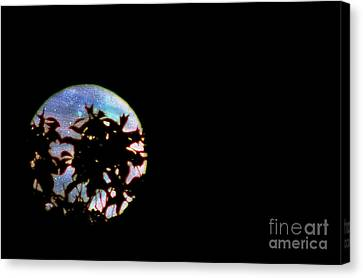 Canvas Print featuring the photograph Moon Rising by Leslie Hunziker