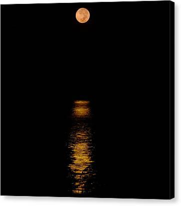 Moon Set Anna Maria Island Canvas Print by Rolf Bertram