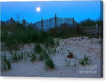 Moon Setting At Beach Plum Island Canvas Print by Robert Pilkington
