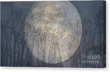 Moon Shadow Canvas Print by France Laliberte