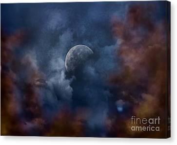 Moon Shine Canvas Print by Andrea Kollo