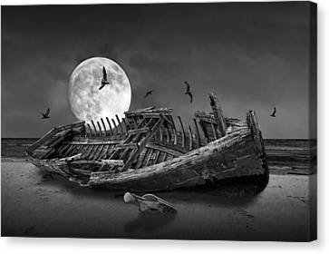 Moon Shipwreck Canvas Print by Randall Nyhof