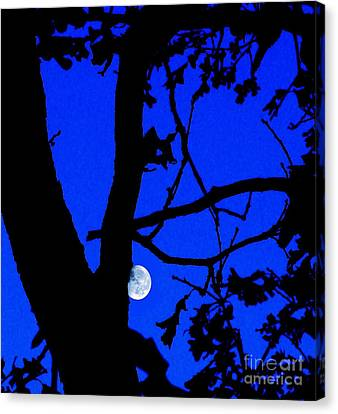 Canvas Print featuring the photograph Moon Through Trees 2 by Janette Boyd